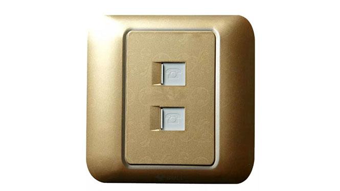 正品公牛墙壁彩色开关插座面板 二位电话拉丝银、多色可选 G10T211