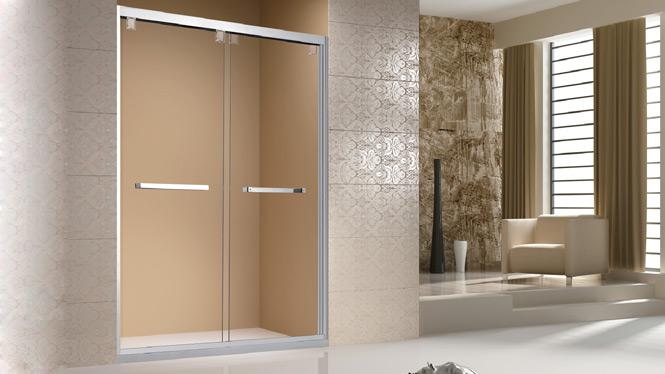 淋浴房一字型屏风整体浴室隔断推拉钢化玻璃移门沐浴房304不锈钢1709