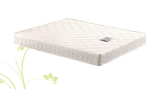 特价弹簧床垫1.5 1.8米天然环保椰棕垫零甲醛软硬席梦思YS-A19