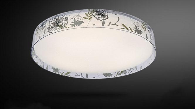 现代简约吸顶卧室灯 个性创意圆形书房灯具灯饰PS6112